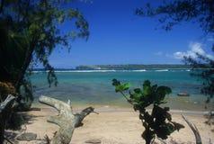 Vista della baia di Hanalei Fotografia Stock Libera da Diritti