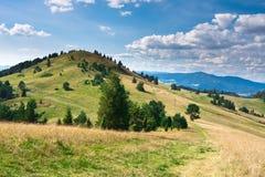 Vista della bici di montagna in Pieniny polacco Fotografia Stock Libera da Diritti