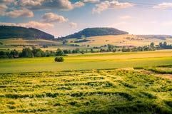 Vista della campagna con i campi e le foreste Immagini Stock