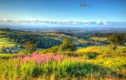 Vista della campagna di Somerset il punto nucleare Hinkley del punto BRITANNICO di Quantocks Somerset England Immagine Stock Libera da Diritti