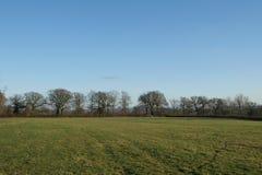 Vista della campagna di un campo verde Fotografie Stock