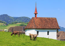 Vista della campagna nel Canton Nidvaldo, Svizzera Fotografia Stock