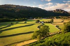 Vista della campagna rurale inglese sulla bella sera soleggiata, SH immagine stock libera da diritti