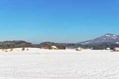 Vista della campagna in Svizzera innevata nell'inverno Immagine Stock Libera da Diritti