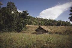 Vista della capanna e del prato della paglia dell'agricoltore del paese in foresta immagini stock libere da diritti