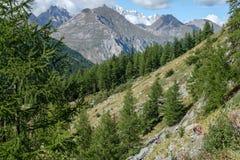Vista della catena montuosa di Mont Blanc dalla valle d'Aosta Fotografia Stock Libera da Diritti