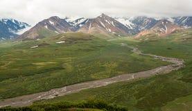 Vista della catena montuosa nel parco di Denali, Alaska Immagini Stock Libere da Diritti