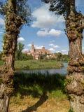 Vista della cattedrale di Tormes Salamanca del fiume, Spagna immagine stock
