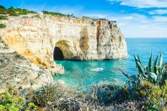 Vista della caverna della spiaggia del Portogallo Algarve con vegetazione comune locale immagine stock libera da diritti