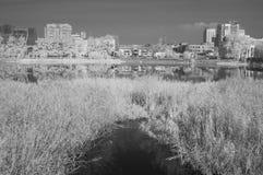 Vista della città di Ä?eljabinsk dell'argine del fiume di Miass Immagini Stock