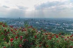 Vista della città di Almaty dalla collina di Koktobe Fotografie Stock