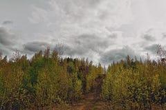 Vista della città di Nižnij Tagil dalla cima della montagna Fotografia Stock