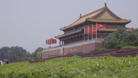 Vista della Città proibita vicino alla piazza Tiananmen stock footage