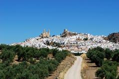 Città bianca, Olvera, Andalusia, Spagna. Immagini Stock Libere da Diritti