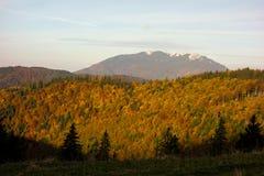 Vista della cresta della montagna della giumenta di Piatra nella stagione di autunno immagini stock libere da diritti