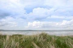 Vista della duna di sabbia dello shannon del fiume Fotografie Stock