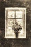 Vista della finestra della fattoria Fotografia Stock