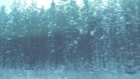 Vista della foresta di inverno dalla finestra di un treno commovente video d archivio
