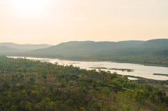 Vista della foresta e del fiume Fotografie Stock