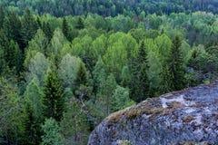 Vista della foresta della molla da alta roccia Fotografia Stock Libera da Diritti