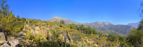 Vista della La Campana National Park immagini stock libere da diritti