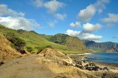Vista della linea costiera hawaiana Fotografia Stock Libera da Diritti
