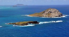 Vista della linea costiera hawaiana Immagine Stock