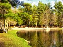 Vista della molla del parco di stato di Burr Pond immagini stock