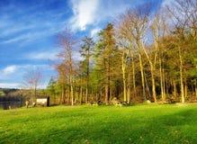 Vista della molla del parco di stato di Burr Pond Fotografia Stock