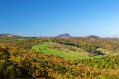 Vista della montagna della Buffalo Immagini Stock Libere da Diritti