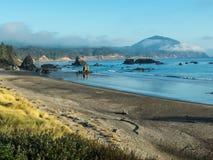 Vista della montagna della falsità sulla costa dell'Oregon Fotografie Stock Libere da Diritti