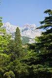 Vista della montagna di Ai-Pétri dalla sosta di Alupka Fotografia Stock Libera da Diritti