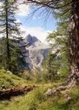 Vista della montagna di Jalovec Fotografie Stock Libere da Diritti