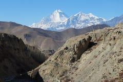 Vista della montagna di Nilgiri immagini stock libere da diritti