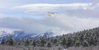 Vista della montagna di Ushba Fotografia Stock