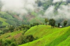 Vista della montagna nel distretto di Pua Immagine Stock