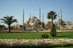 Vista della moschea (blu) di Sultanahmet a Costantinopoli Fotografia Stock