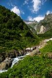 Vista della natura, corrente fresca del fiume della montagna che scorre da sotto il g fotografie stock libere da diritti