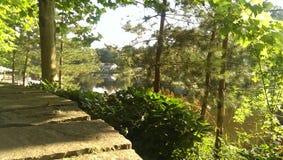Vista della natura del lago Fotografie Stock