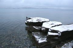 Vista della neve del lago Wakatipu fotografia stock