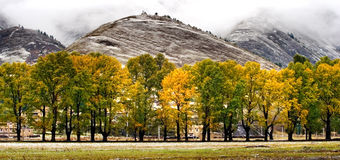 Vista della neve del villaggio tibetano aShangri-La Cina fotografia stock libera da diritti