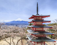 Vista della pagoda e di sakura di Chureito con il fondo di Mt.fuji Immagini Stock