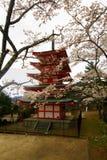 Vista della pagoda nell'area del santuario di Arakura Sengen, Tokyo, Giappone di Chureito fotografia stock libera da diritti