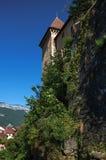 Vista della parete posteriore del castello di Annecy con le piante che coprono le pietre a Annecy Fotografia Stock Libera da Diritti