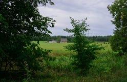 Vista della proprietà rurale nel campo Paesaggio in Lettonia fotografia stock