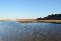Vista della riva Fotografie Stock