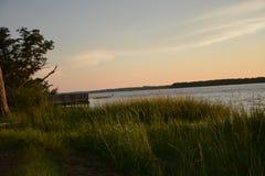 Vista della riva Fotografie Stock Libere da Diritti