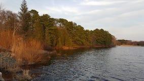 Vista della riva del lago Immagini Stock