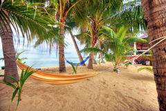 Vista della sabbia vuota tropicale piacevole Immagini Stock