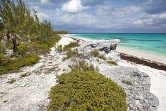 Vista della scogliera della spiaggia del faro Fotografia Stock Libera da Diritti